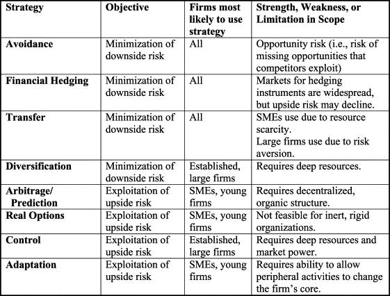 Business risk management conventional and entrepreneurial strategies for managing country risk flashek Gallery